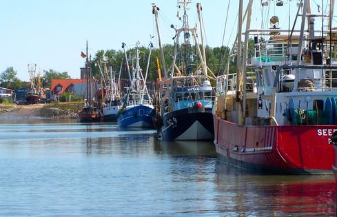 Hafen, Museum, Büsum, Nordsee, Schleswig-Holstein, Dithmarschen, Wasser, Meer, Sonne, Strand, Boote, Schiffe, Fischkutter, glasklar, blau, Krabben, Krabbenfischer, angeln, Ruhe, Ferienwohnung, Urlaub,
