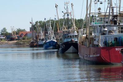 Schleswig-Holsteinisch, Nordseeküste, Hafen, Büsum, Schiffe, Krabbenkutter, Krabben, chic, Meer, fischen, Fischkutter, Ausflüge, Nordseeküste, Schifffahrt, Boote, Bootsausflüge, Ferienwohnung Nordsee,