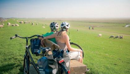 Deich, Natur, Ruhe, Rad fahren, Schafe, Nordsee, Büsum, Urlaub, Nordsee, Schleswig-Holstein, Dithmarschen, Ferienwohnung bisschen-schicker, Reise, Kinder,